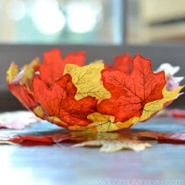 Fall colored leaves in the shape of a bowl