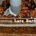 Homemade-Lara-Bars3