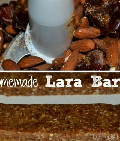 Homemade-Lara-Bars3