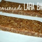homemade-lara-bars4