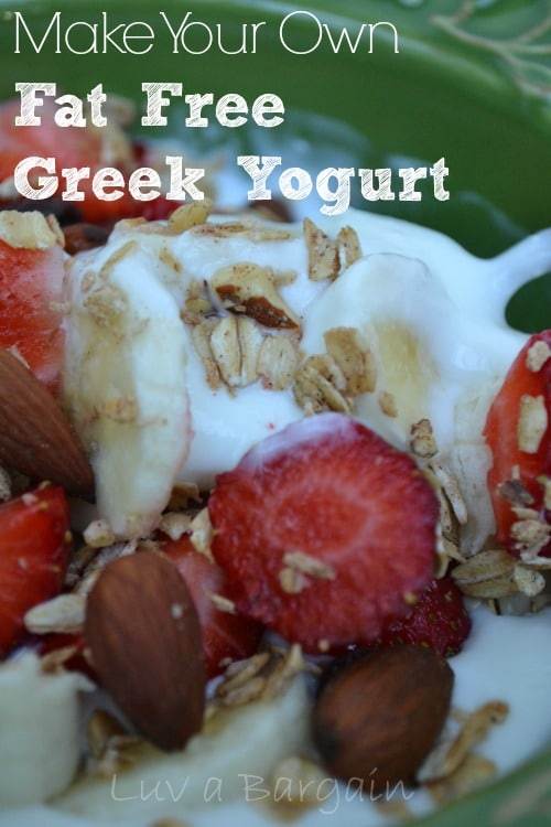 How to Make Fat Free Greek Yogurt2