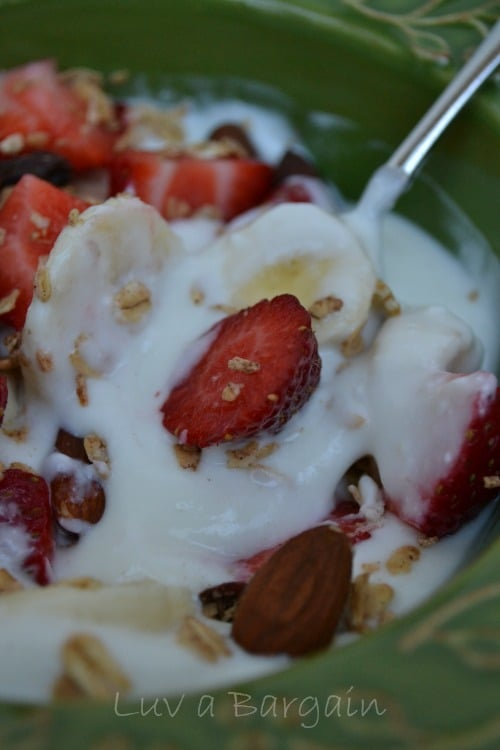 How to Make Fat Free Greek Yogurt3