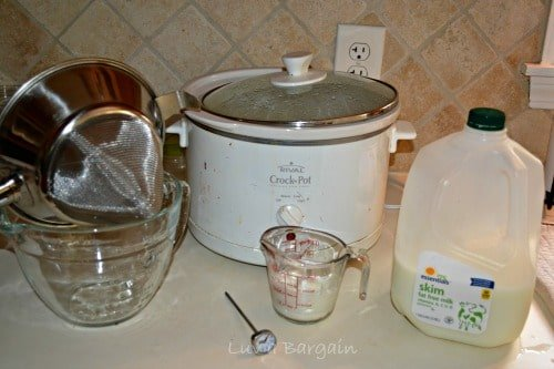 ingredients for yogurt