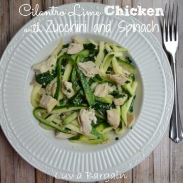 a white plate with sliced zucchini and chicken