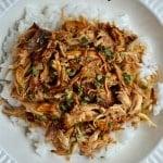 Slow Cooker Chicken Teriyaki1
