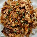 closeup of shredded chicken teriyaki over white rice