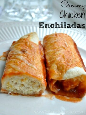 A close up of two Chicken Enchiladas on a white plate