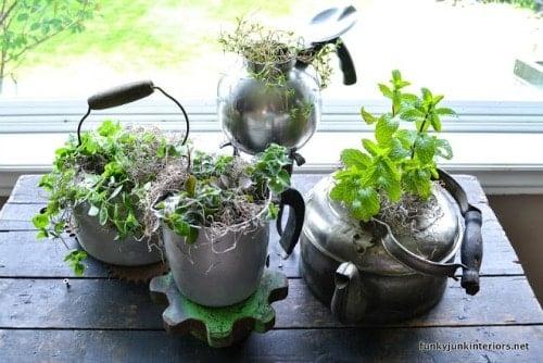 herb-garden-in-old-kettles