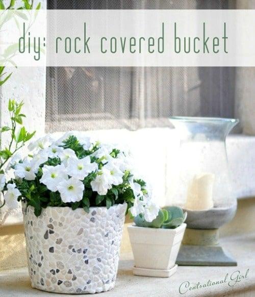 rocky planter