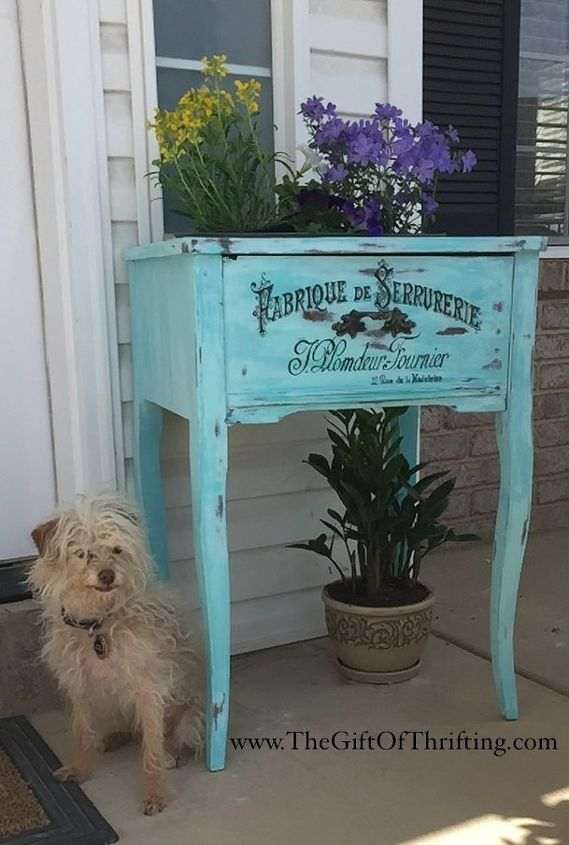 A dog sitting in front of a blue table
