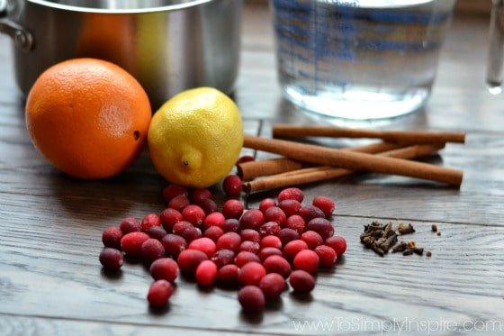 cranberries, lemon, orange cinnamon sticks, silver pot and measuring up