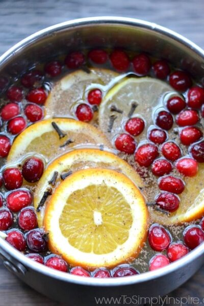 Homemade Potpourri for the Holidays2