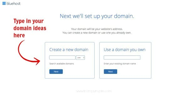 pick your domain name on bluehost page