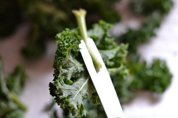 How to Make Kale Chips5