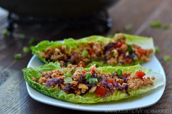 These Thai Lettuce Wraps are healthy, simple and quick and, most importantly, absolutely delicious! Plus you can have them ready from start to eating in about 20 minutes!