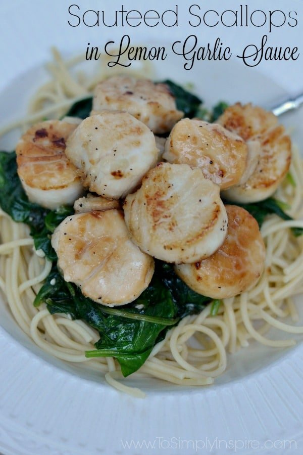 eight sautéed scallops on a bed of spinach and spaghetti noodles