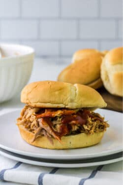 Barbecue Pulled Pork on a Bun with barbecee sauce