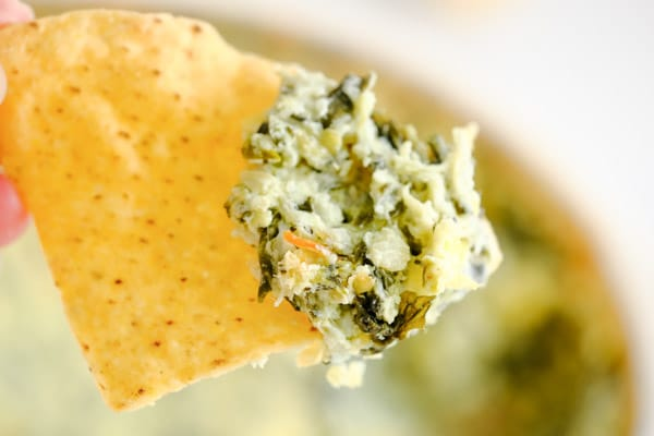 closeup of a tortilla chip with spinach artichoke dip on it
