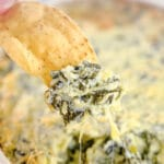 closeup of a scoop of spinach artichoke dip with a tortilla chip over the dish full of dip