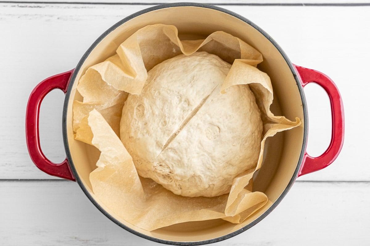 round sourdough bread dough in a red dutch oven